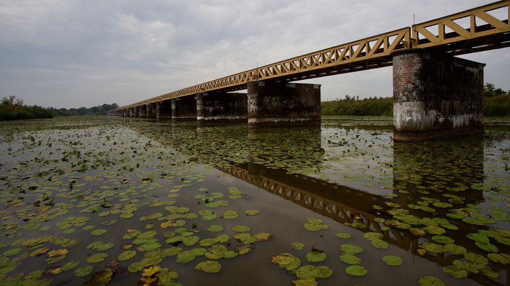 Photo in Random #moerputten #den bosch #'s hertogenbosch #railway #railwaybridge