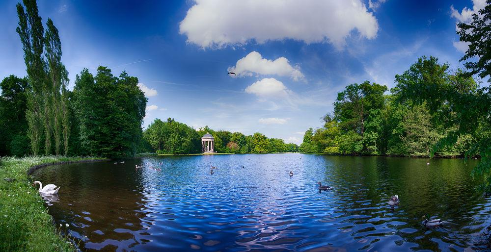 Photo in Random #castle #chateau #park #schloss #outdoor #munich #birds #ducks #see #lake #enten #sky #natur #nature #draußen #nice #green #blue #grün #blau #water #wasser #ypa2013 #beautiful