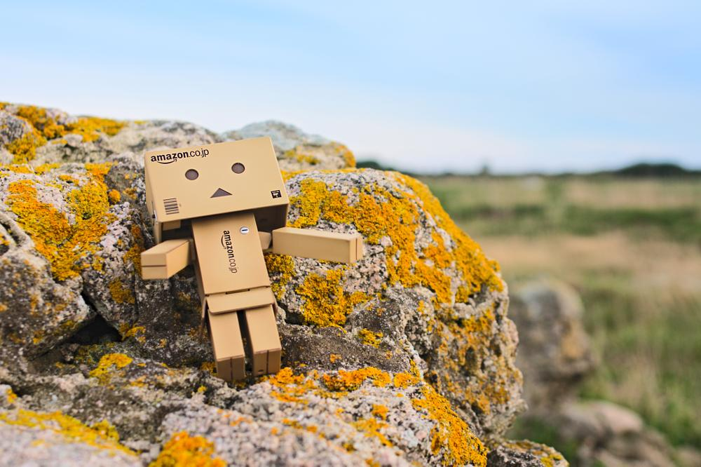Photo in Product #danbo #awesome #amazoncojp #japan #figurine #fun #funny #drole #color #composition #focus #sharpeness #toy #enjoy #sky #bleu #ciel