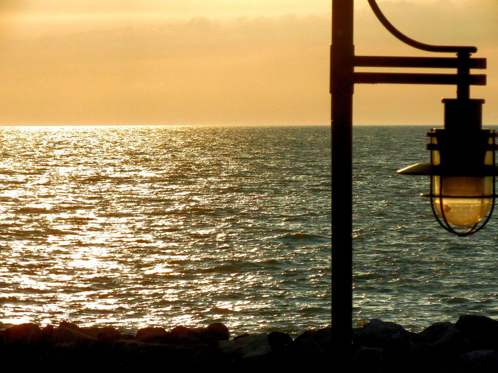 Photo in Sea and Sand #summer #miller road park #sunset #lake erie #the golden hour