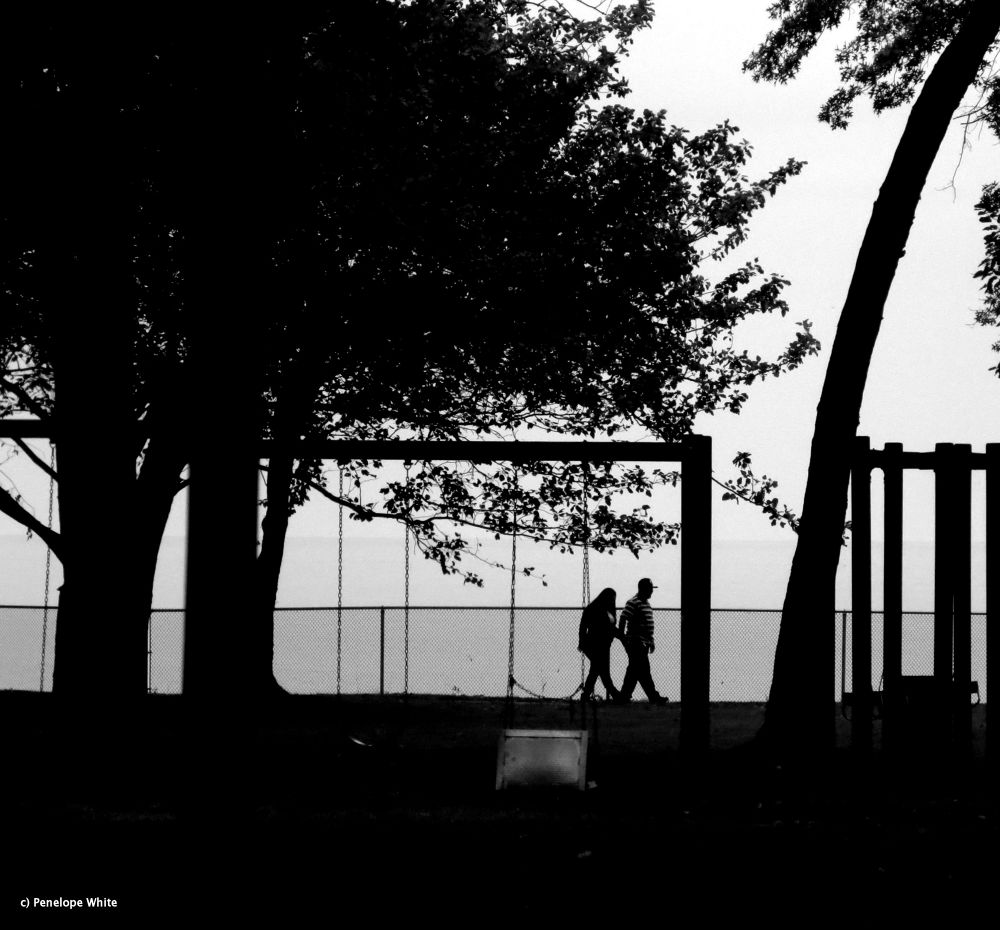 Photo in Black and White #miller road park #black and white #silhouettes