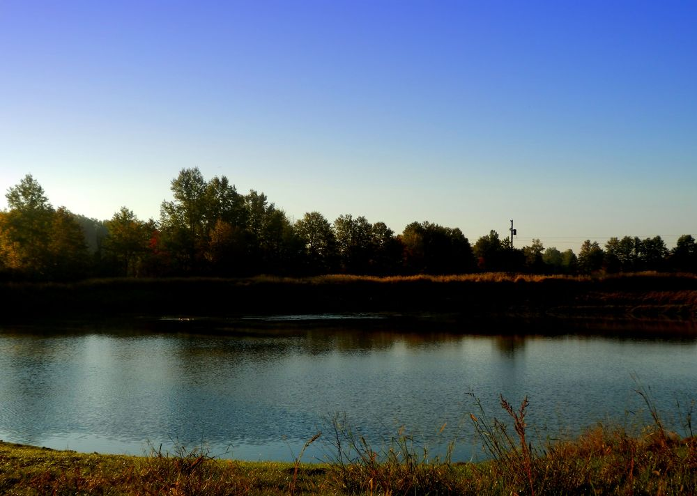 Photo in Landscape #the pond #sunrise #landscape