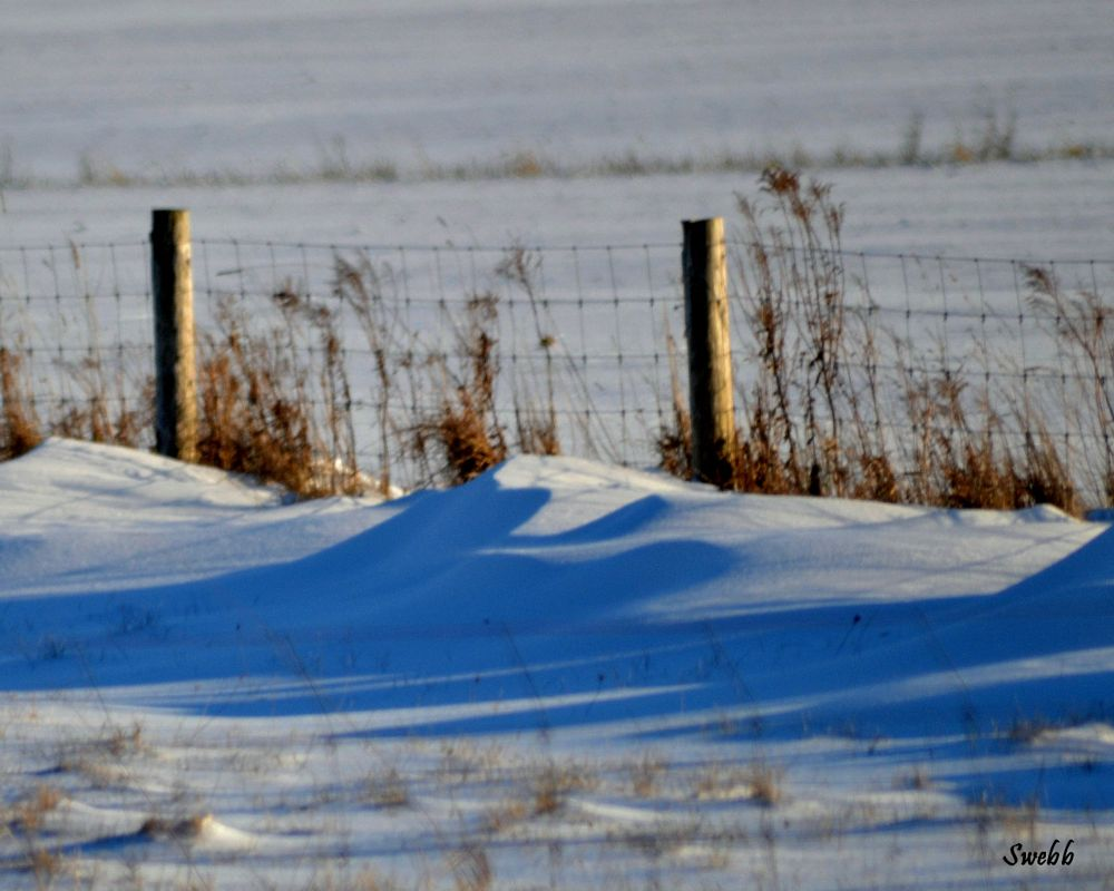 Photo in Landscape #rural #fence #snow