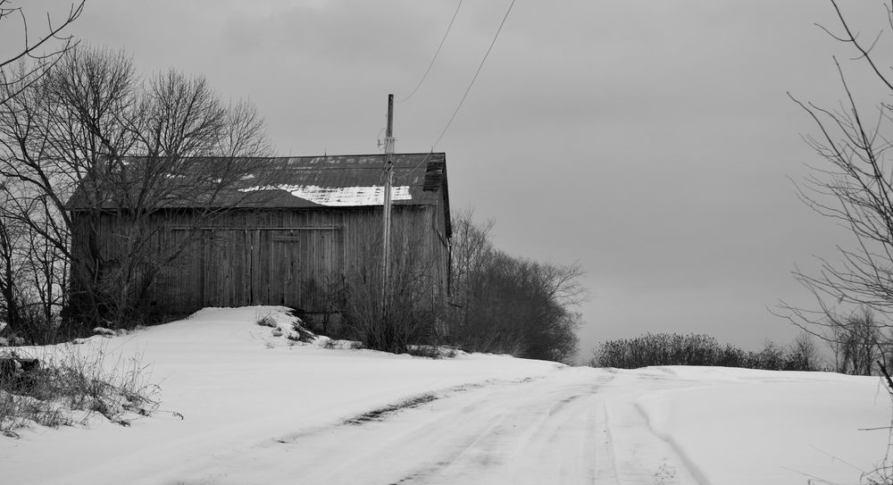Photo in Random #barn #rural #monochrome #farm #winter #b&w #snow #trees