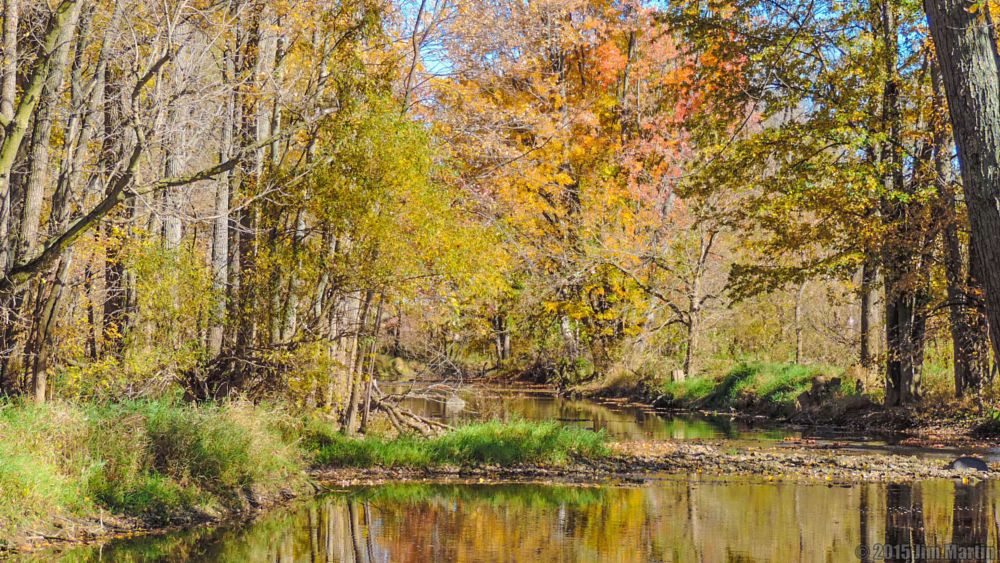 Photo in Nature #findlay #ohio #river #fall #colors #blanchard #photography #october #2015