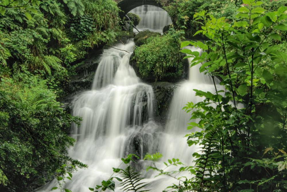 Photo in Landscape #waterfall #water #trees #landscape