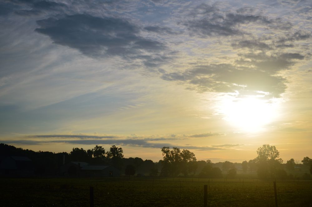 Photo in Landscape #landscape #sunrise #trees