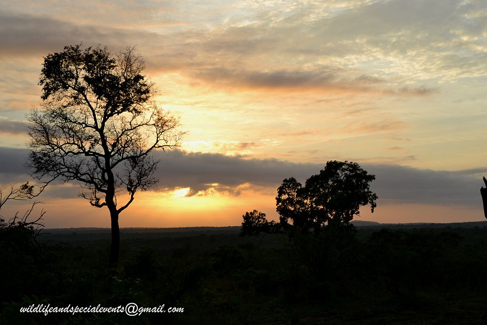 Photo in Landscape #travel #sunrise #africa
