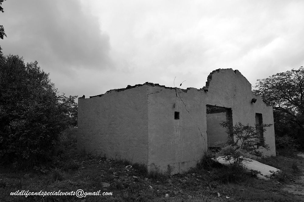 Photo in Black and White #travel #b&w #africa