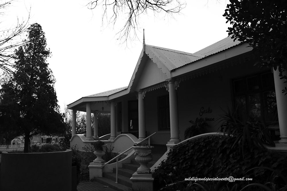 Photo in Black and White #travel #b&w #home