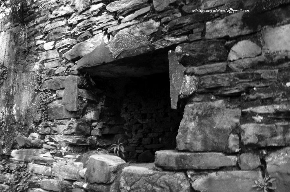 Photo in Black and White #travel #b&w #black&white