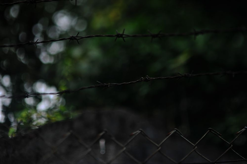 Photo in Abstract #barb wire #wire #hongkong #abstract