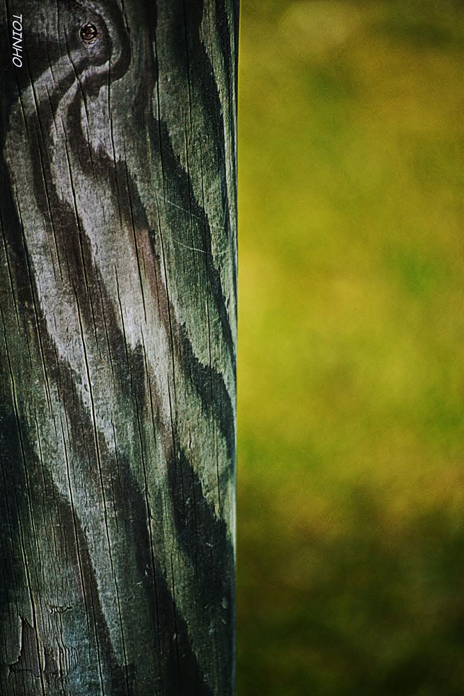 Photo in Abstract #wood #madeira #old #velho #green #verde #ypa2013 #contraste #contrast