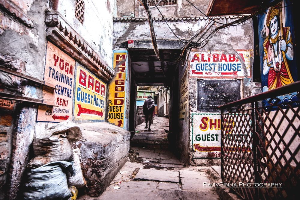 Photo in Street Photography #travel #street photography #travel photography #varanasi