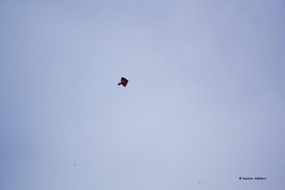 Photo in Random #kite #sky #random