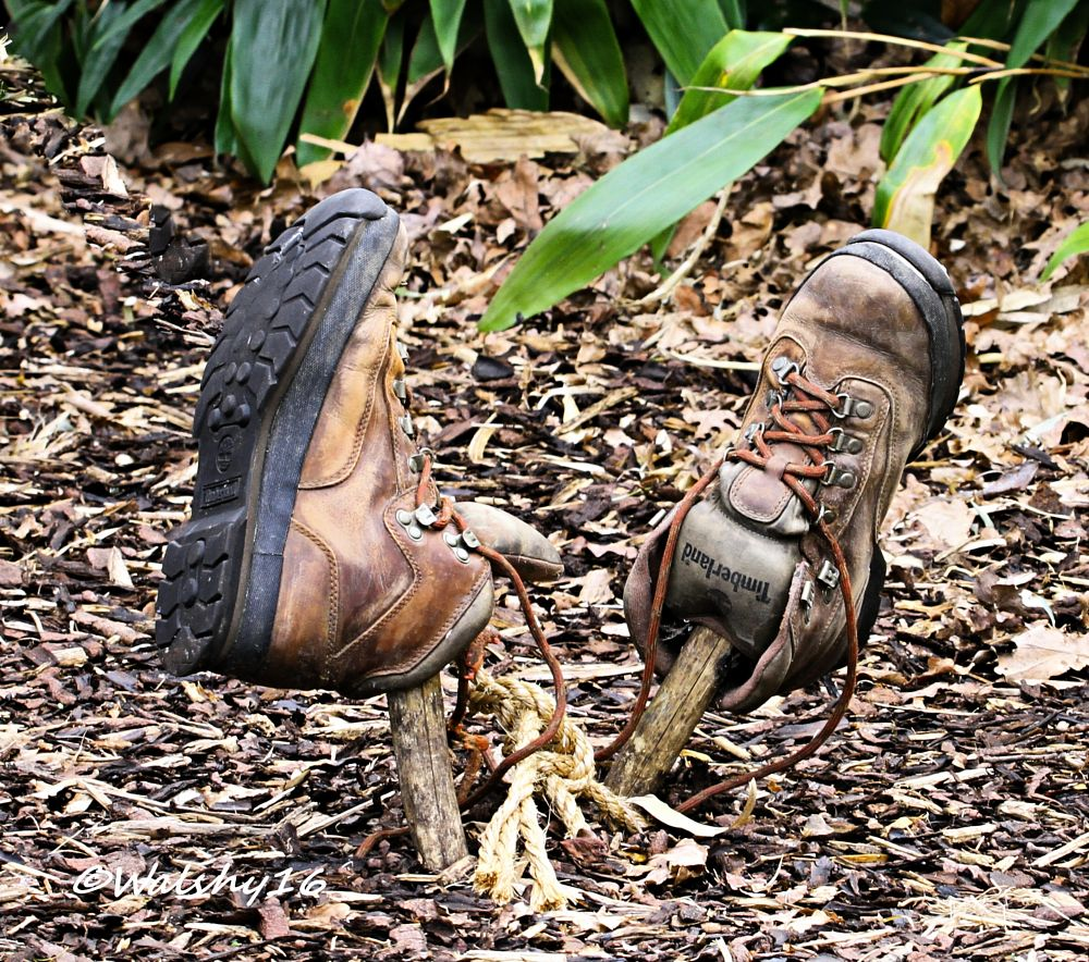 Photo in Random #boots #still life #nature