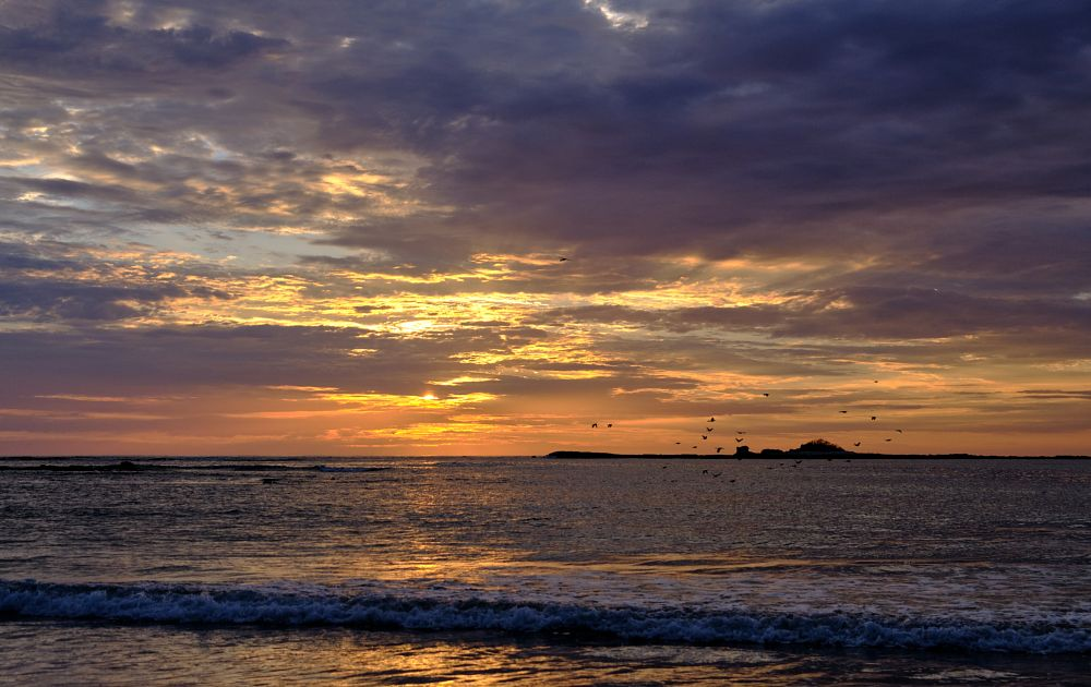 Photo in Landscape #sunset #playa tamarindo #grackles #colours #clouds #ocean