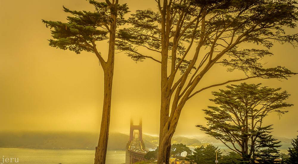 Photo in Random #cranston #golden gate #bridge #san francisco