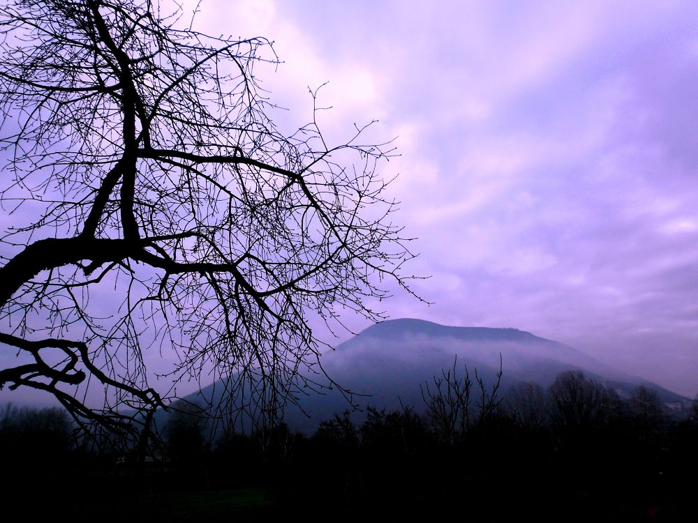 Photo in Random #hill #sky #clouds #twilight #branches #tree