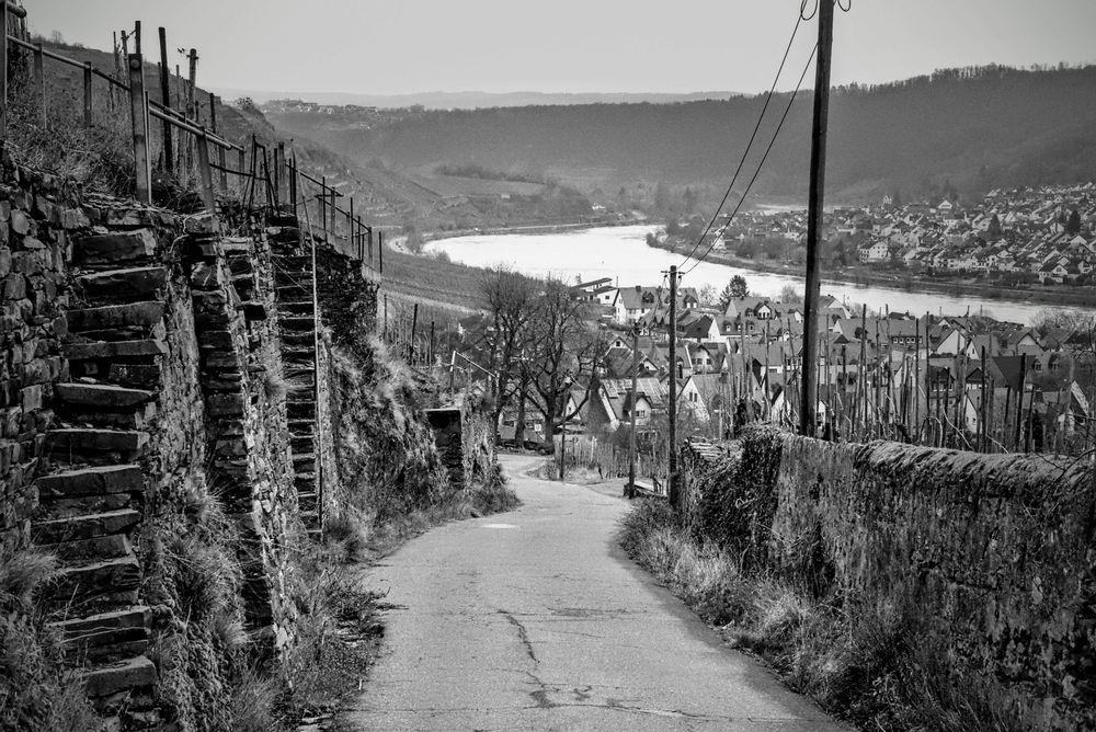 Photo in Black and White #landschaft #moselland #weinanbau #winzer #tradition #schwarz/weiß