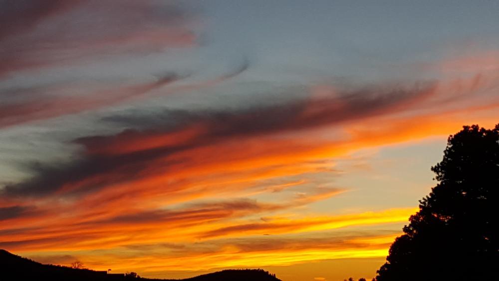 Photo in Landscape #sunset #blazingsun #blazingsky