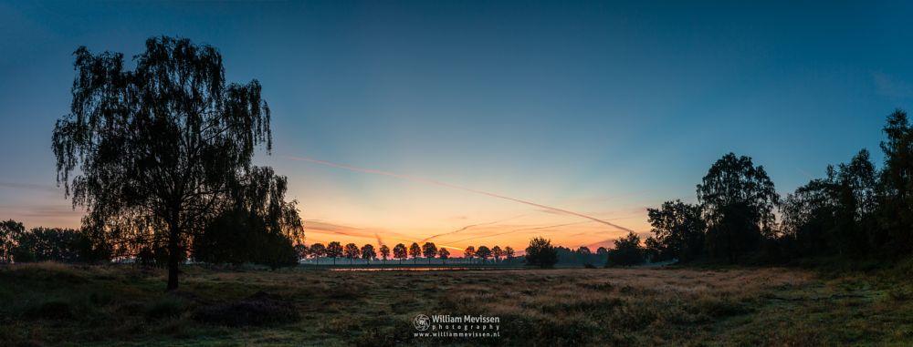 Photo in Landscape #forest #woods #heathland #maasduinen #limburg #noord-limburg #nieuw-bergen #bergen #national park #nature #light #land #trees #twilight #ceresweg #eckeltsebergen #heather #sunrise