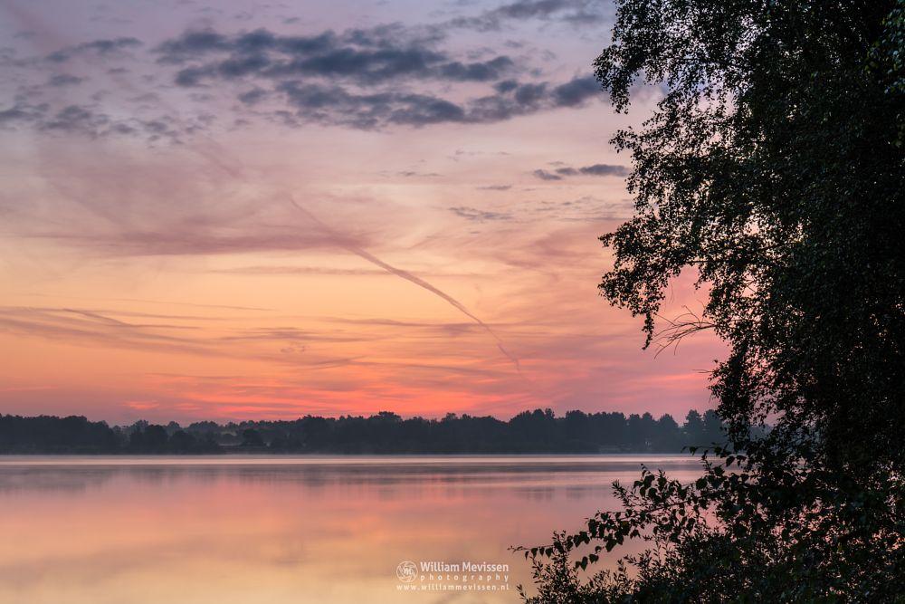 Photo in Landscape #trees #pine #pine forest #forest #lake #reindersmeer #maasduinen #limburg #noord-limburg #national park #well #silhouettes #nature #green #twilight #sunrise #bay #colors #light