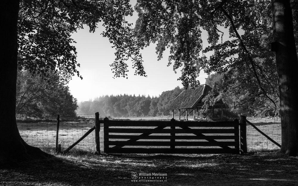 Photo in Black and White #geijsteren #venray #oostrum #landgoed geijsteren #limburg #noord-limburg #nature #forest #rosmolen #blackandwhite #sheepfold #fence #gate