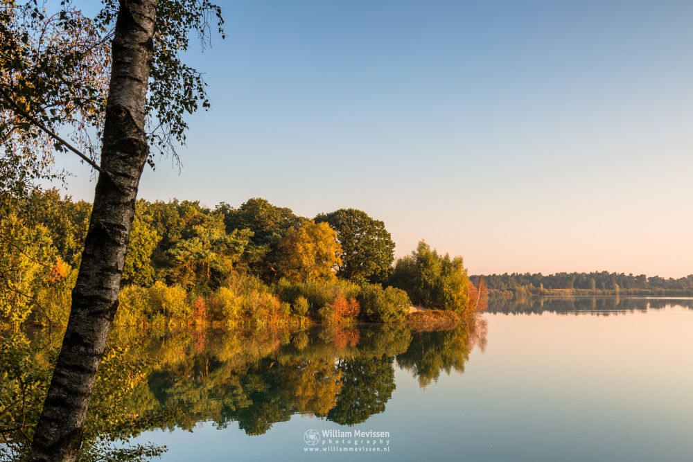 Photo in Landscape #trees #pine #pine forest #forest #lake #reindersmeer #maasduinen #limburg #noord-limburg #well #national park #nature #green #sunrise #colors #light #serene #view #mist #mood #mirror #birch