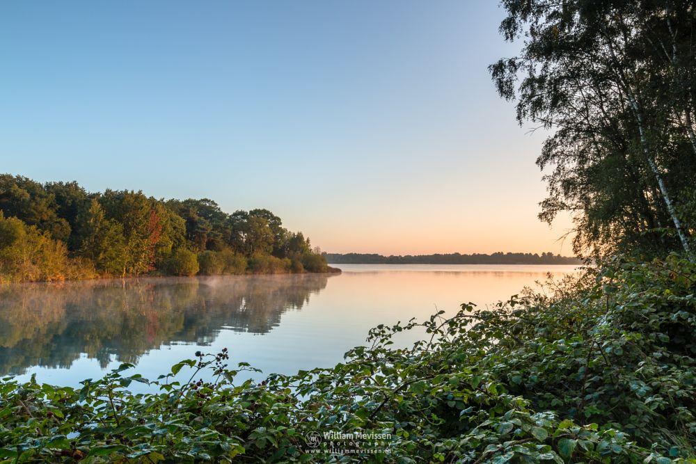 Photo in Landscape #maasduinen #birch #reindersmeer #limburg #well #lake #trees #green #nature #colors #serene #view #golden #mood #goldenhour #sunrise #mist #light wbpa #noord-limburg