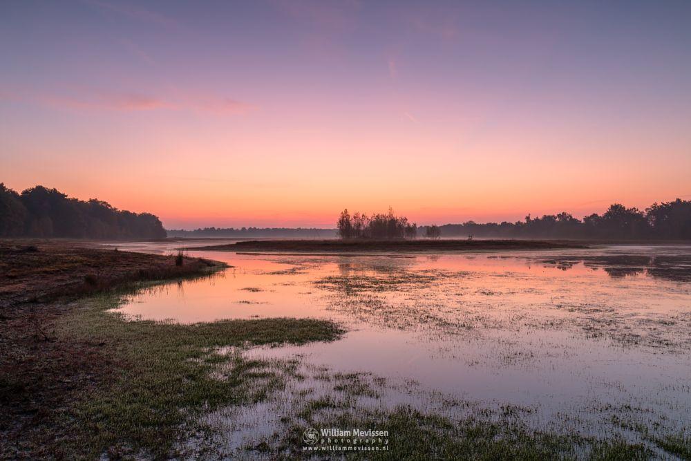Photo in Landscape #autumn #bergen #nature #mist #twilight #mood #sunrise #light #nieuw-bergen #noord-limburg #limburg #bergerheide #maasduinen