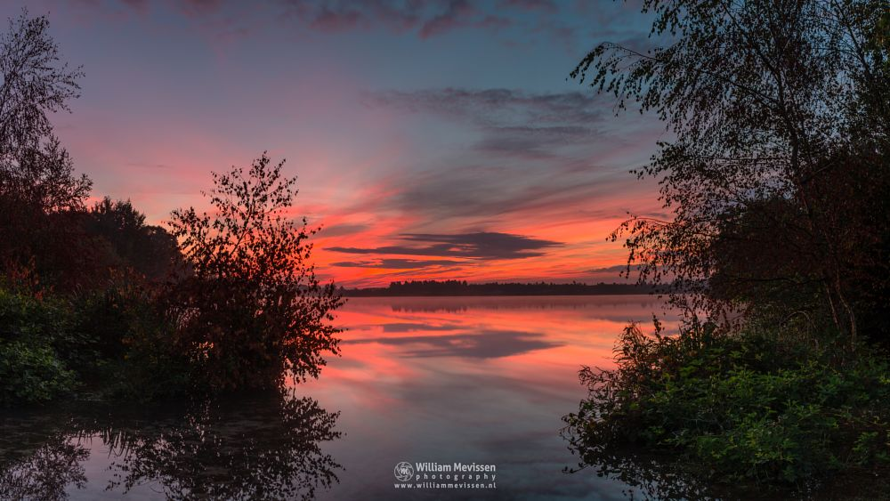 Photo in Landscape #trees #pine #pine forest #forest #lake #reindersmeer #maasduinen #limburg #noord-limburg #well #national park #nature #sunrise #colors #clouds #reflections #mirror #twilight #red #sky