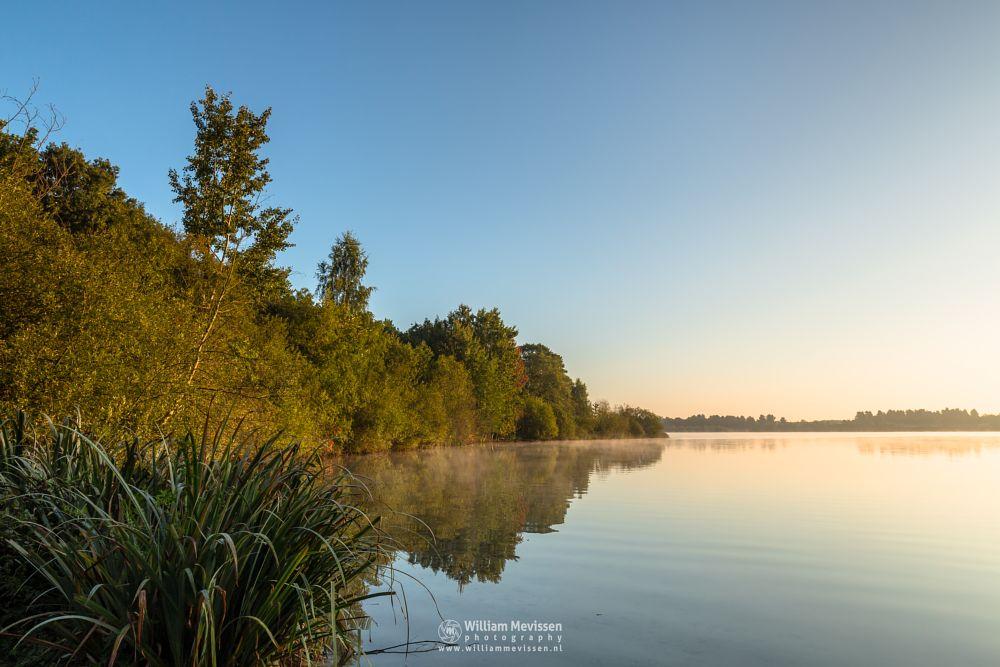 Photo in Landscape #trees #lake #reindersmeer #maasduinen #limburg #noord-limburg #well #sunrise #light #serene #mist #mood #goldenhour #golden #view #colors