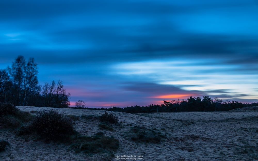Photo in Landscape #bergerheide #forest #woods #heathland #maasduinen #limburg #noord-limburg #nieuw-bergen #bergen #national park #nature #sand #dunes #sanddunes #tree #trees #sky #clouds #twilight #dawn #le #long exposure #80 seconds