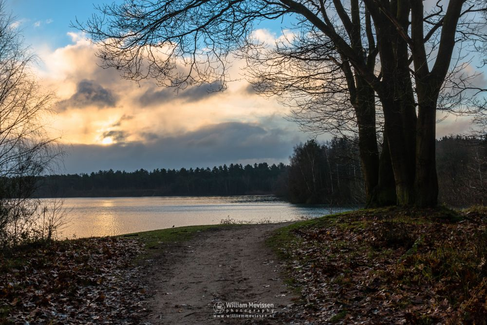 Photo in Landscape #rain #rainy #clouds #cloudy #light #green #morning #tree #trees #pine #pine forest #forest #silence #mood #path #lake #reindersmeer #maasduinen #noord-limburg #limburg #national park #well #nature