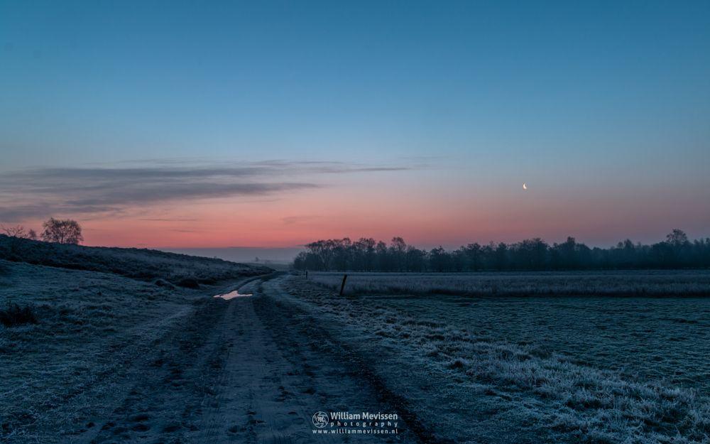 Photo in Landscape #bergerheide #woods #forest #heathland #fen #maasduinen #noord-limburg #limburg #nieuw-bergen #bergen #national park #frosty #frost #nature #path #winter #light #land #clouds #silhouettes #twilight #moon #fog #foggy #mist #misty #dirt road