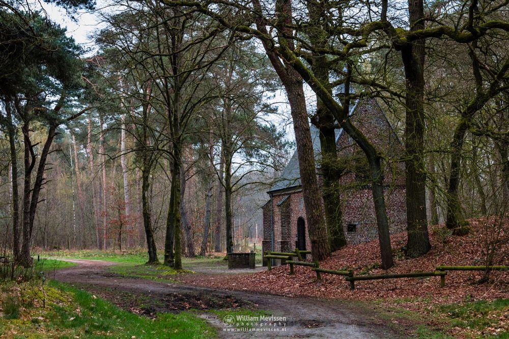 Photo in Nature #geijsteren #venray #oostrum #landgoed geijsteren #estate #landgoed #weichs de wenne #limburg #noord-limburg #nature #nature reserve #forest #woods #geysteren #path #chapel #well #boundary stone #willibrorduskapel