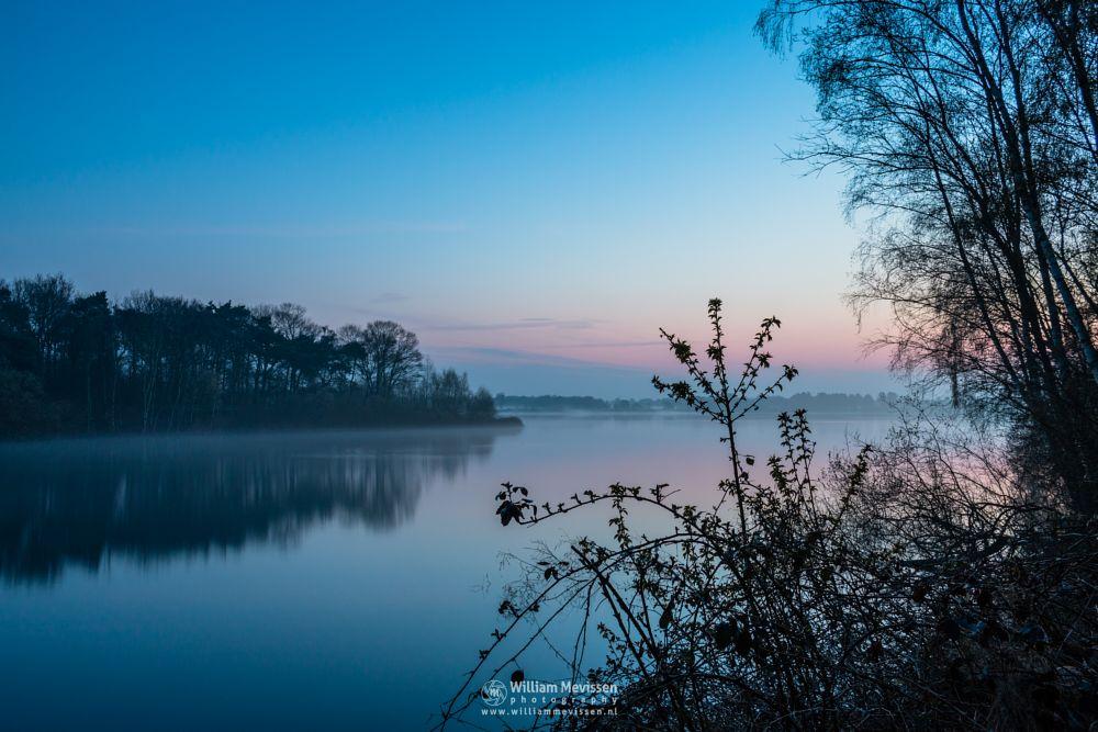 Photo in Landscape #reindersmeer #maasduinen #well #netherlands #limburg #noord-limburg #twilight #mist #sunrise #blue #light #bay #mood #silhouette #silhouettes #lake #trees