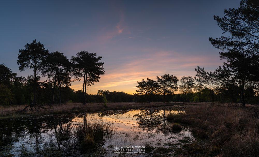 Photo in Landscape #ravenvennen twilight painted
