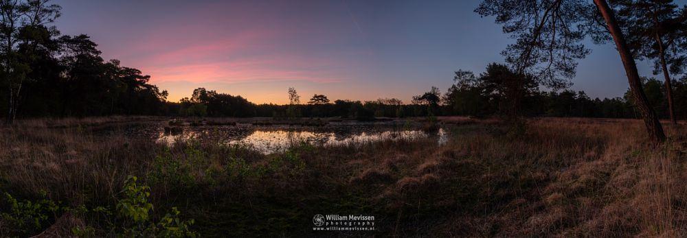 Photo in Landscape #ravenvennen lomm limburg no #ravenvennen #lomm #limburg #noord-limburg #arcen #nature #nature reserve #forest #woods #velden #netherlands #venlo #twilight #sunrise #pink #fen #heatland #riverdunes #dune #swamp
