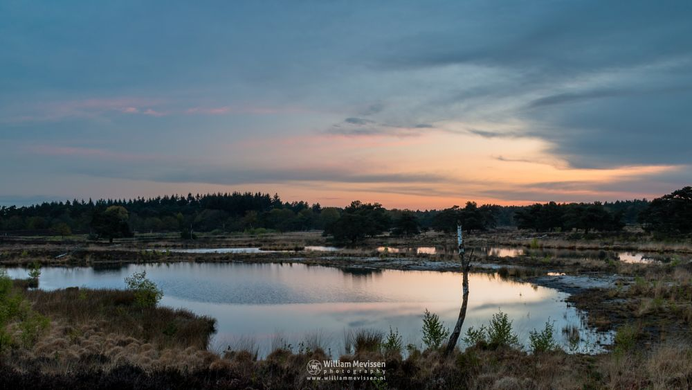 Photo in Landscape #peaceful #serene #serenity #sunrise #twilight #dune #riverdunes #heatland #fen #cloudy #bergerbos #netherlands #maasduinen #woods #forest #nature reserve #nature #afferden #noord-limburg #limburg #het quin #quin