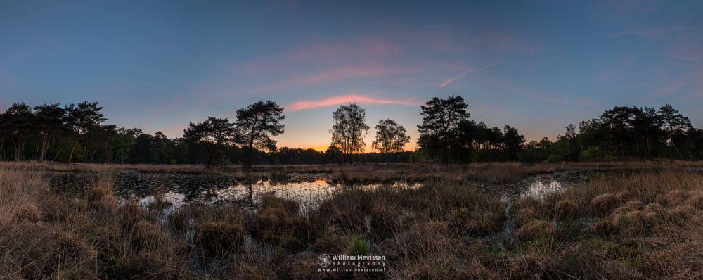 Photo in Landscape #ravenvennen #lomm #limburg #noord-limburg #arcen #nature #nature reserve #forest #woods #fen #velden #netherlands #venlo #twilight #sunrise #heatland #riverdunes #dune