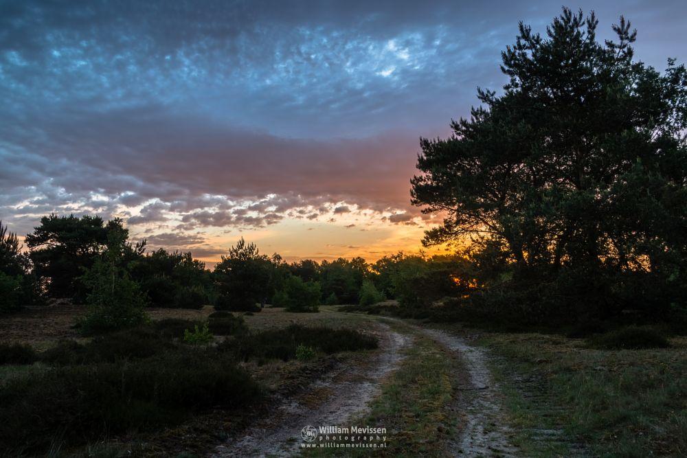Photo in Nature #bergerheide #forest #woods #heathland #fen #maasduinen #limburg #noord-limburg #nieuw-bergen #bergen #national park #nature #sand #dunes #sanddunes #sunrise #light #land #clouds #trees #path #hdr
