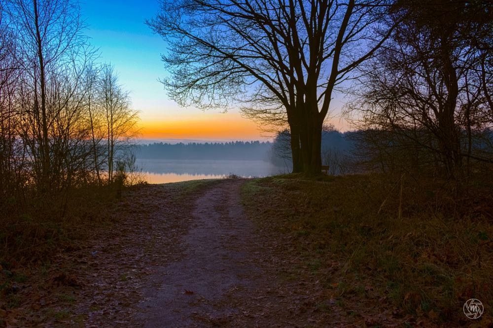 Photo in Landscape #hdr #bench #blue #fog #foggy #lake #limburg #maasduinen #nature #netherlands #noord-limburg #orange #path #reindersmeer #serene #sunrise #tree #well #wm-sunrise-view
