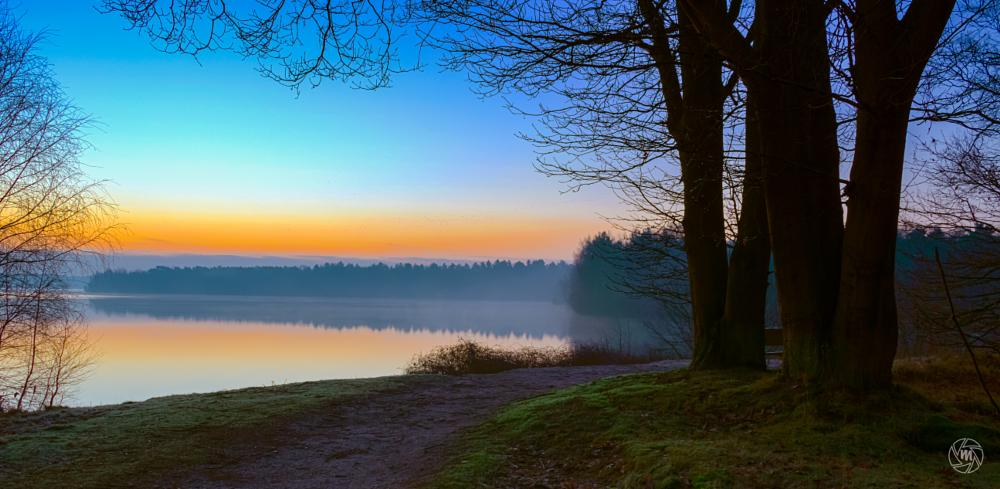 Photo in Landscape #hdr #blue #foggy #fog #lake #limburg #maasduinen #nature #netherlands #noord-limburg #orange #path #reindersmeer #serene #sunrise #tree #well #woods #wm-sunrise-view