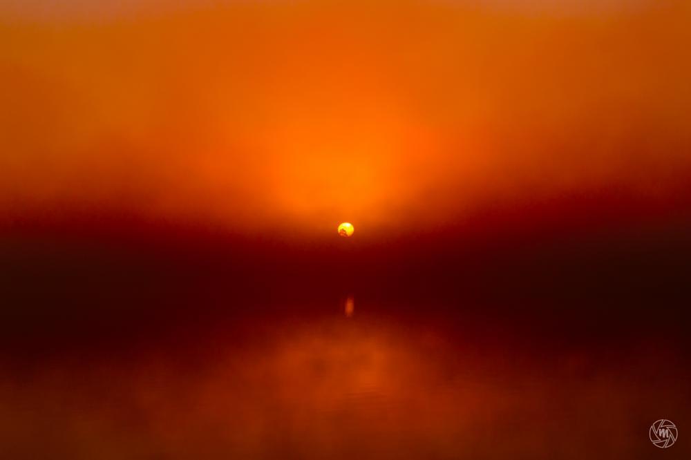 Photo in Landscape #burning #fog #sky #dawn #foggy #lake #maasduinen #mist #nature #netherlands #red #orange #reflections #tree #well #yellow #sun #wm-foggy-sunrise