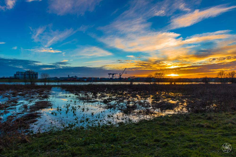 Photo in Landscape #clouds #container #flooded #harbor #industrial #port #industry #limburg #maas #meuse #nature #netherlands #noord-limburg #reflections #river #sky #sunset #trees #wanssum #well #baend #national park #nature reserve