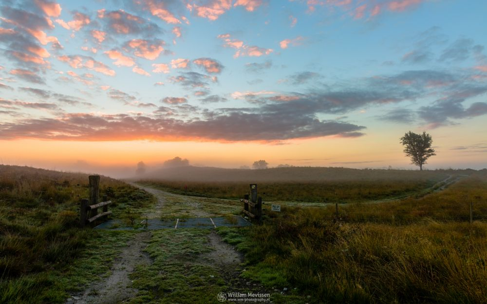 Photo in Landscape #sunrise #orange #sunlight #light #tree #sky #clouds #landgoed #landgoed de hamert #estate #twilight #mist #misty #foggy #fog #de hamert #hamert #maasduinen #limburg #noord-limburg #wellerlooi #national park #nature #limburgs landschap #mistic #schrikdraad #sign #electric fence #cattle grid #path #fence