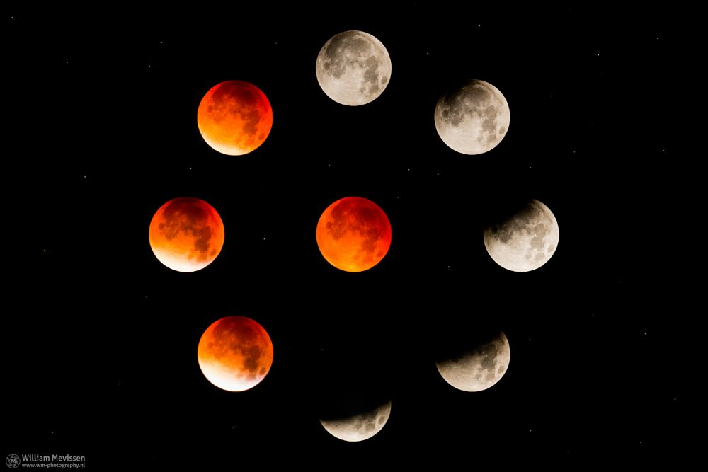 Photo in Astrophotography #blood moon #moon #red #full moon #red moon #netherlands #limburg