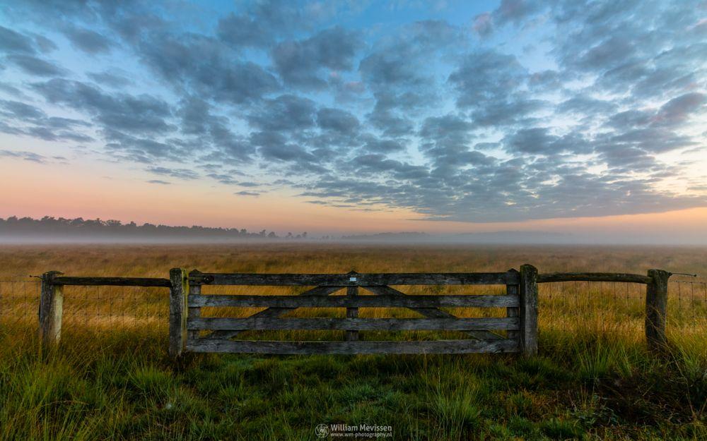 Photo in Landscape #sunrise #orange #sunlight #light #tree #sky #clouds #landgoed #landgoed de hamert #de hamert #hamert #estate #twilight #mist #misty #fog #foggy #maasduinen #noord-limburg #limburg #wellerlooi #national park #limburgs landschap #mistic #path #gate #nature